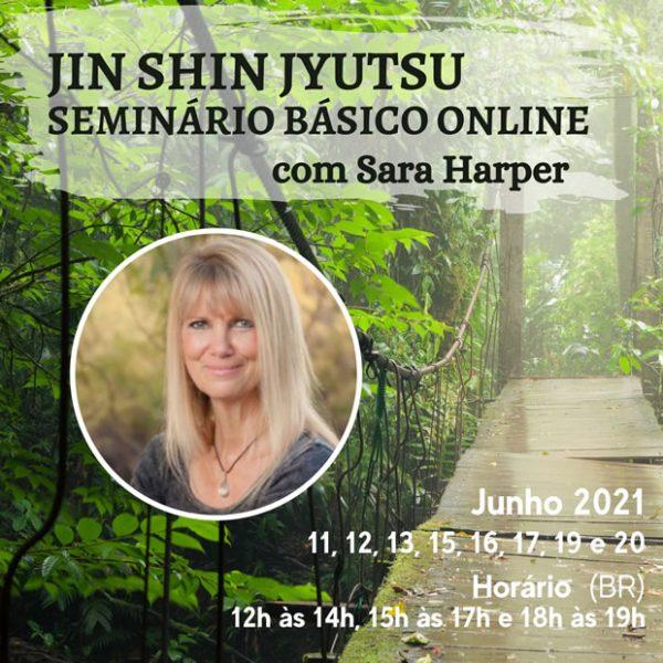 Seminário Básico ONLINE de Jin Shin Jyutsu com Sara Harper – Começa em 11 de junho