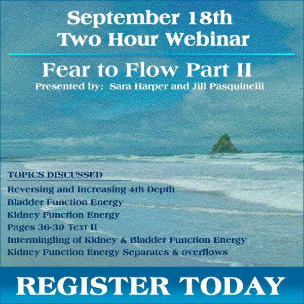 From Fear to Flow II